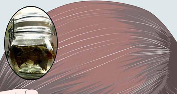 ereko.am : Благодаря шалфею и яблочному уксусу седые волосы ...