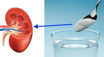 Восстановите здоровье почек естественным способом и всего с 1 ингредиентом!