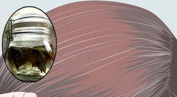 Благодаря шалфею и яблочному уксусу седые волосы темнеют естественным путем!